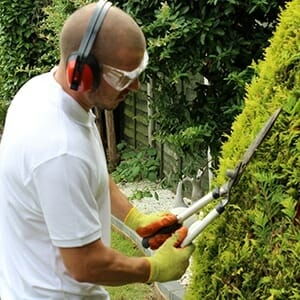 Weed Removal and Hedge Pruning