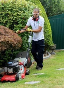 Garden Maintenance and Care